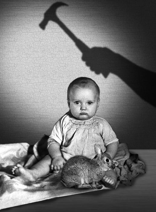 L'étude des phobies : le cas du petit Albert par J.B. Watson