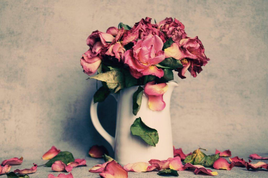 deuil, psychologie : des roses se fanent