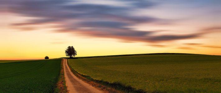 psychologue libéral: chemin vers la tranquilité financière