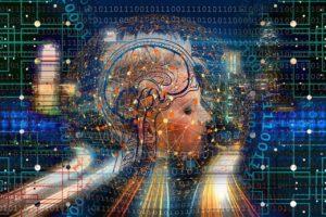 comportementalisme: image d'un cerveau